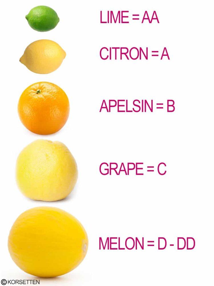 Frukttest för att hitta rätt bh storlek