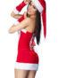 Läckert julset bestående av en mjuk bustier, kjol, handskar och tomteluvabakifrån