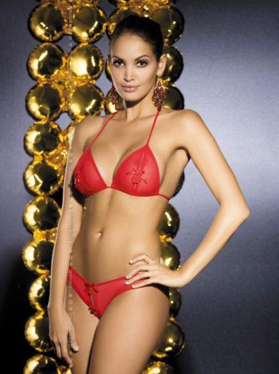 Röda sexiga underkläder